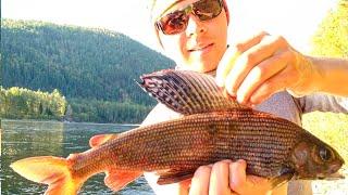 Лучшие реки для рыбалки в сибири