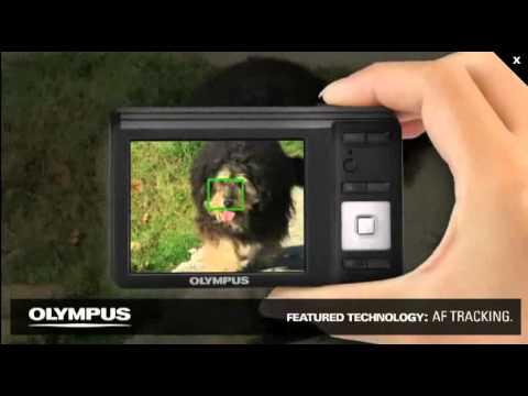 Olympus - Câmera Digital - FE 4020 - 14 Megapixels - Zoom Óptico 4x - LCD de 2,7