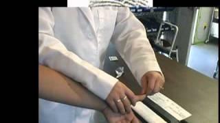 How To Roll Fingerprints