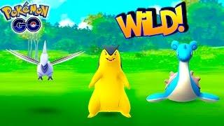 Typhlosion  - (Pokémon) - WILD TYPHLOSION, LAPRAS & MORE IN POKEMON GO! The LAST Santa Monica Pier Hunt... FOR NOW!
