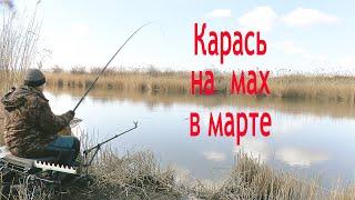Где рыбалка на карася ранней весной