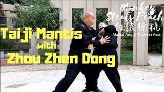 Exclusive Interview with Taiji Mantis Kung Fu Master Zhou Zhen Dong
