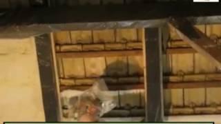 ZOBACZ VIDEO