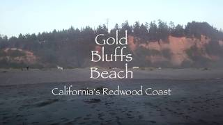 Gold Bluffs Beach | California's Redwood Coast | DJI MAVIC PRO DRONE beautiful beach footage