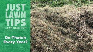 Should I DeThatch My Lawn Every Year? | Lawn Dethatching