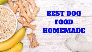 Best Dog Food Dachshund  Homemade |  Dog Food for Dachshunds