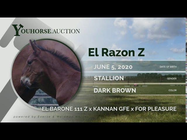 El Razón Z