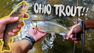 Ohio Trout Fishing! (Clear fork, Mohican)
