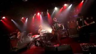 The Dandy Warhols - Wasp In the Lotus (Excellent Live version)