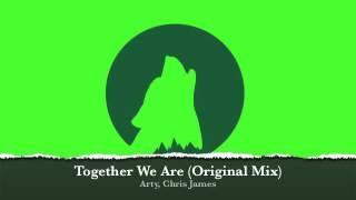 Arty, Chris James - Together We Are (Original Mix)