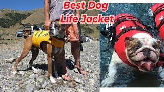 Top 5 Best Dog Life Jacket Vest Reviews for your dogs