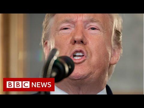 Trump lifts sanctions on Turkey over Syria assault - BBC News