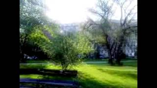 Video Marek Dusil Blend -Máj v Sherwoodu (May in Sherwood) (official m