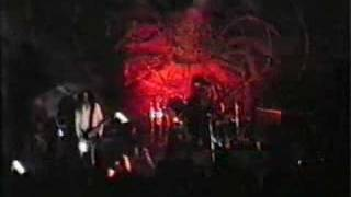 DISHARMONIC ORCHESTRA - Like madness from above , live 1993