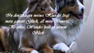Hundesprüche 3 Hund Sprüche