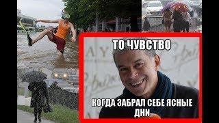 Мои ясные дни (ПАРОДИЯ VS Газманов)