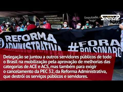 Delegação do Sindsep em Brasília pressiona deputados a aprovarem PECs 14 e 22 e cancelar a PEC 32