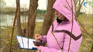В Великом Новгороде открылся военно-полевой лагерь для подготовки молодежи к службе в армии
