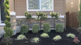 How To Landscape A Front Yard In Mill Creek Wa