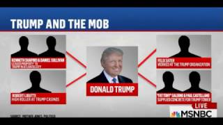 "MSNBC: Trump Has Ties To The Mob. ""He"