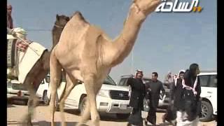 اغاني حصرية مزاين الكويت 2014 | العابرة | مسيرة فردية / سعود بن عبدالله المطيري تحميل MP3