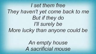 Abandoned Pools - Lucky Lyrics