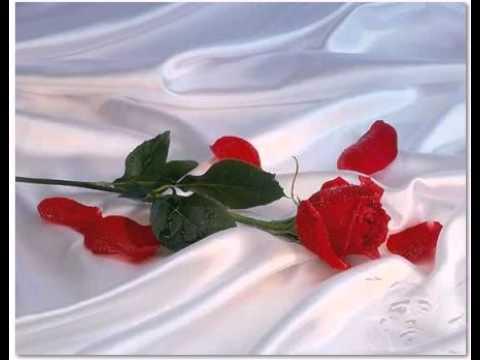 Música A Rosa Que Te Dei