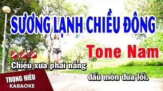 karaoke-suong-lanh-chieu-dong-tone-nam-nhac-song-trong-hieu