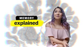 Memory, explained | from Vox + Netflix's The Mind, Explained