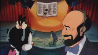 Yakko - All of the Words in the English Language