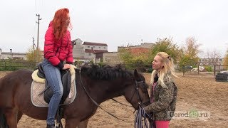 Гимнастика на лошади - просто?