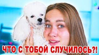 Я НАШЛА ЕГО! ТБИ - 12 серия