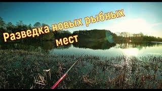 Отчеты о рыбалке смоленск и область