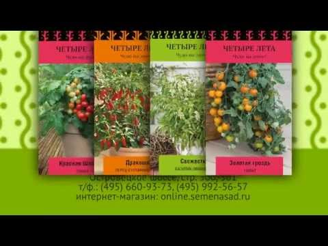 Огород на подоконнике. Семена овощей и трав для выращивания на балконе и подоконнике.