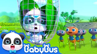 Look for Butterfly's Babies | Super Panda Rescue Team | BabyBus Cartoon