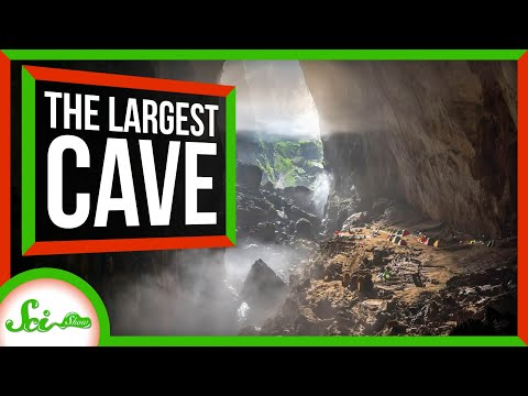 This Cave In Vietnam Is So Big It Has Its Own Rainforests!