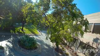FPV Freestyle Race Drone - Sunday Afternoon Dives
