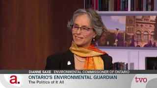 Our Environmental Guardian
