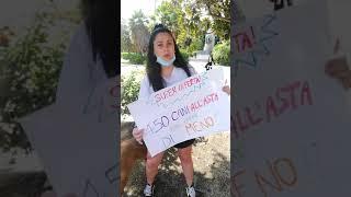 Randagi a Messina, protesta dei volontari contro il Comune