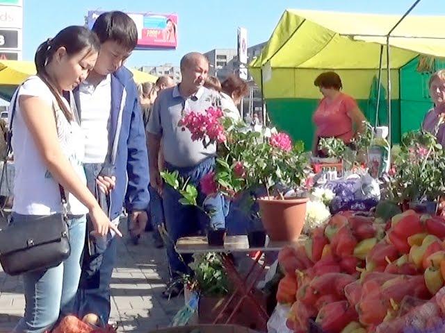 Ярмарки урожая продлятся до конца сентября