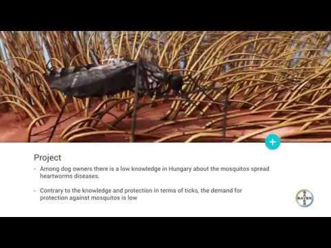 Parazita helminth tojások