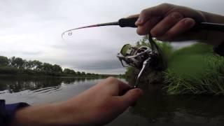 Ловля рыбы на реке быстрая сосна