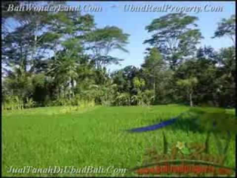 2.885 m2 Lahan  View Sawah dan sungai Kecil di Ubud TJUB442