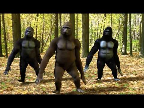 ABBA vs King Kong and Friends-King Kong Song-video edit