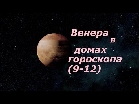Астрология выбор профессия