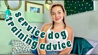 service dog training - tips and advice when you're starting out