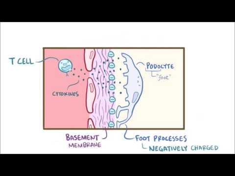 Prostatamassage Simferopol