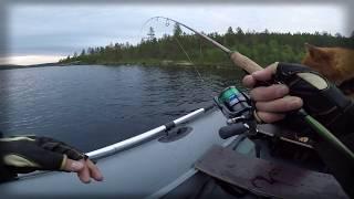 Ловля озерной кумжи на кольском полуострове