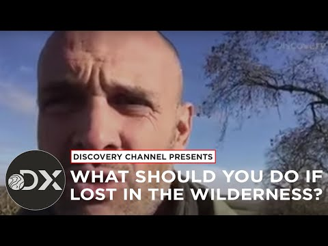 What Should You Do If Lost In The Wildnerness?