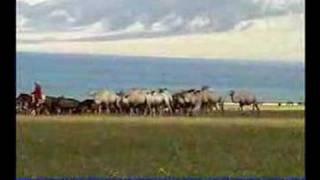XinJiang Mongolian Play and Sing(Jianggeer江格尔)